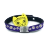 purple with daisies beastie band cat safety collar combo
