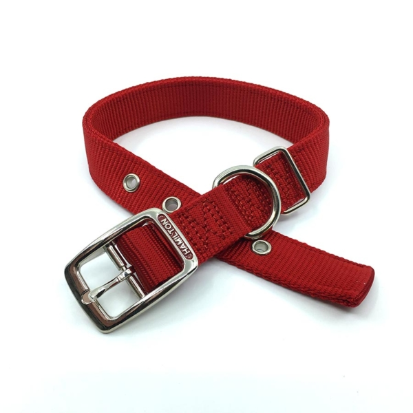 red pink double thick nylon collar belt buckle style collar tag