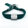 green double thick nylon collar with stainless steel slide on style collar tag