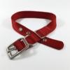 red single thick nylon belt buckle collar