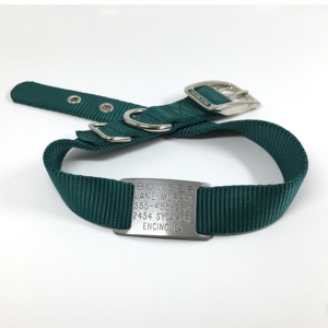 green single thick nylon collar with stainless steel collar tag id for pets